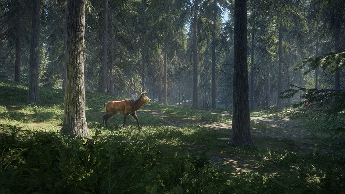 The Hunter Call of the Wild Telechargment PC